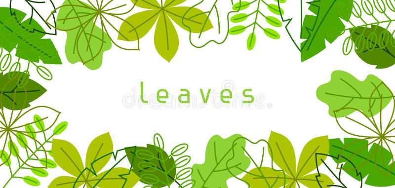 Natuurlijke banner met gestileerde groene bladeren De lente of de zomergebladerte royalty-vrije illustratie
