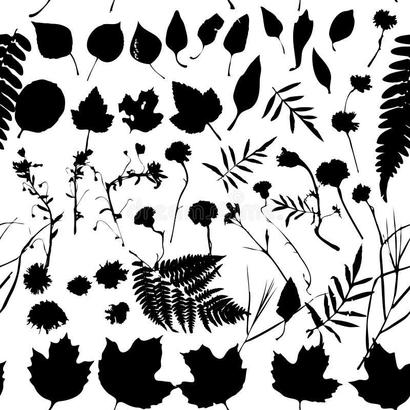 Natuurlijke bloemen naadloze patroon Grafische inzameling met bladeren en bloemenelementen Het ontwerp van de de lentezomer voor  royalty-vrije illustratie