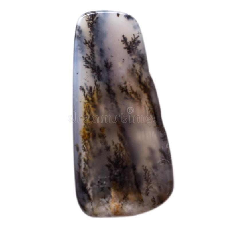 Natuurlijke cabochon van glanzende agaatmacro royalty-vrije stock fotografie
