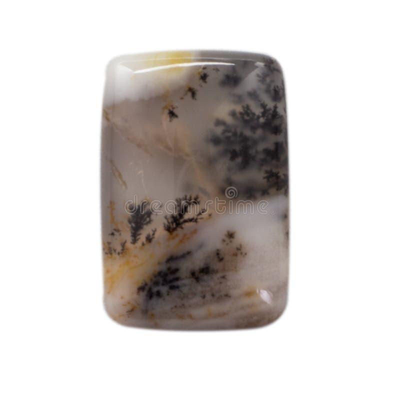 Natuurlijke cabochon van glanzende agaatmacro stock foto
