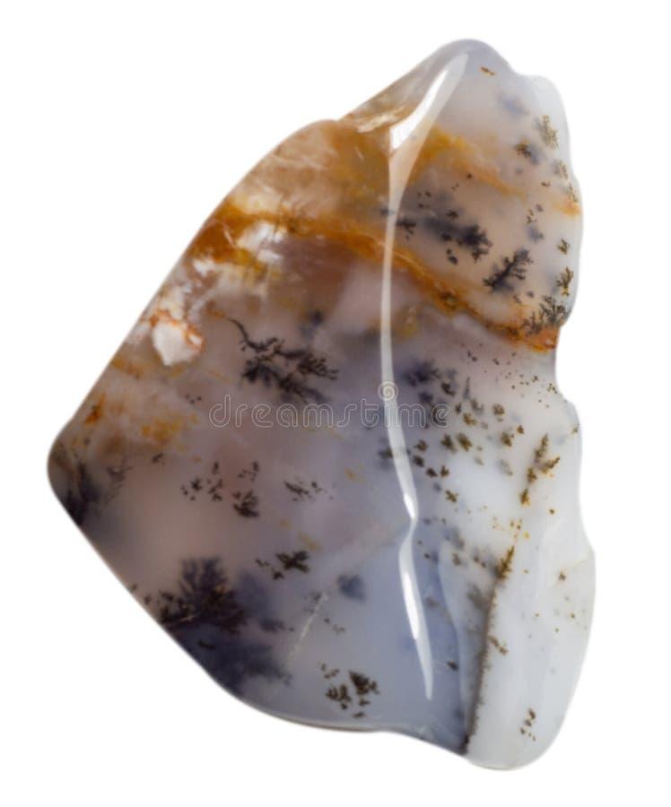 Natuurlijke cabochon van glanzende agaatmacro royalty-vrije stock afbeelding