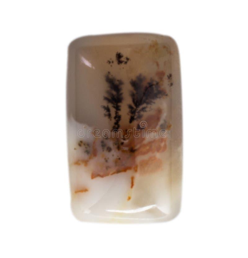 Natuurlijke cabochon van glanzende agaatmacro stock afbeelding