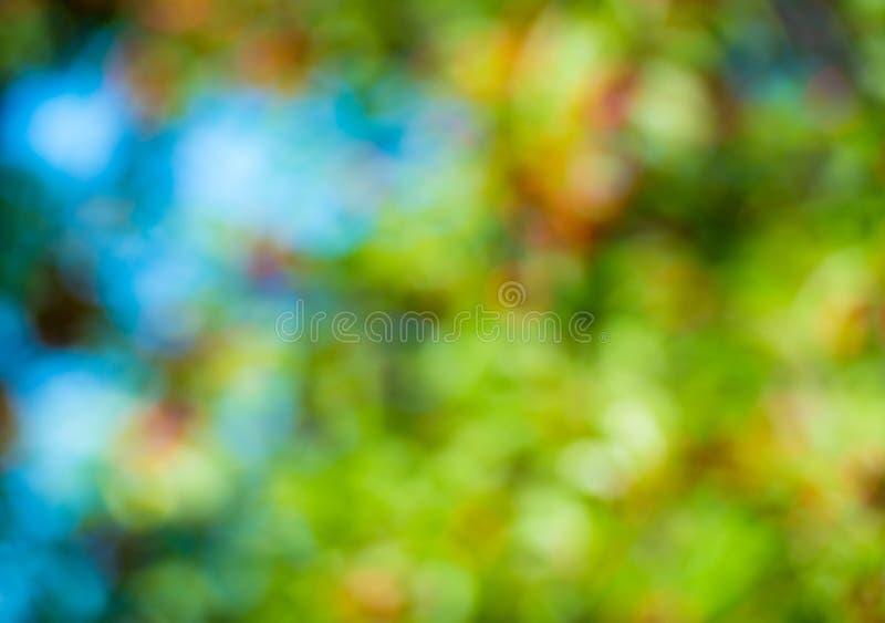 Natuurlijke de lente bokeh groene en blauwe kleur, achtergrond stock fotografie