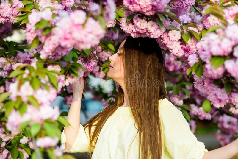 Natuurlijke de zomerschoonheid Skincare en kuuroord Natuurlijke Schoonheidsmiddelen voor Huid meisje in kersenbloem Sakuraboom he stock afbeeldingen