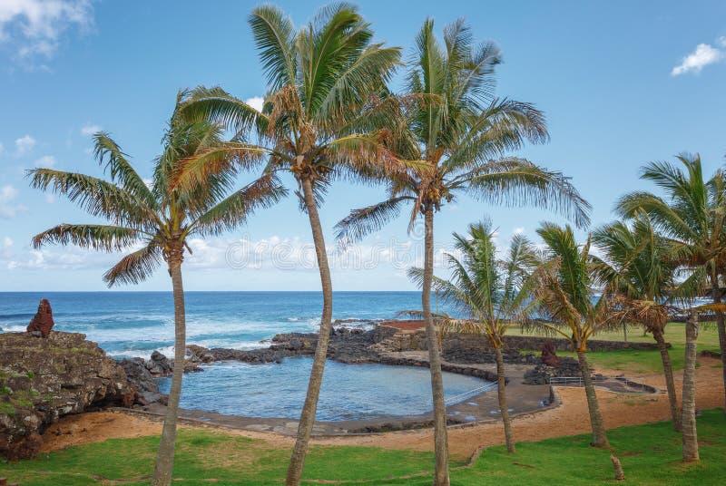 Natuurlijke die pool door palmen, in Hanga Roa, Pasen Isla wordt omringd royalty-vrije stock afbeelding