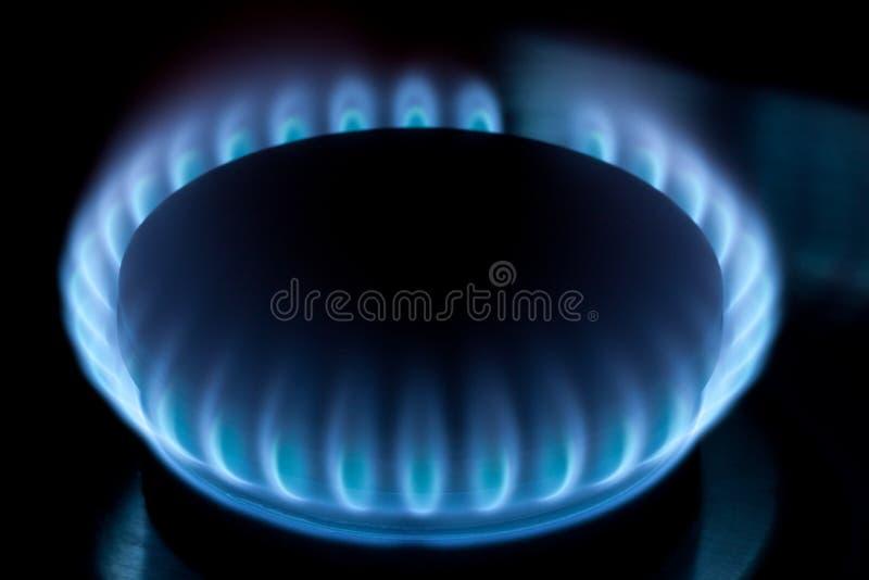 Natuurlijke gasfornuis blauwe vlammen royalty-vrije stock foto