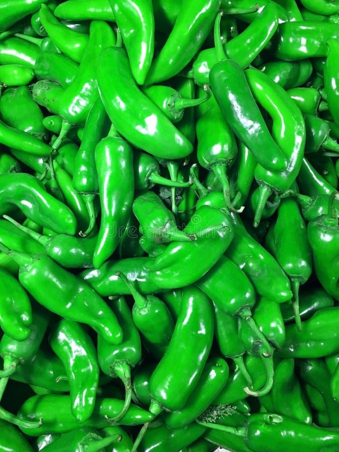 Natuurlijke groene Spaanse pepers royalty-vrije stock foto's