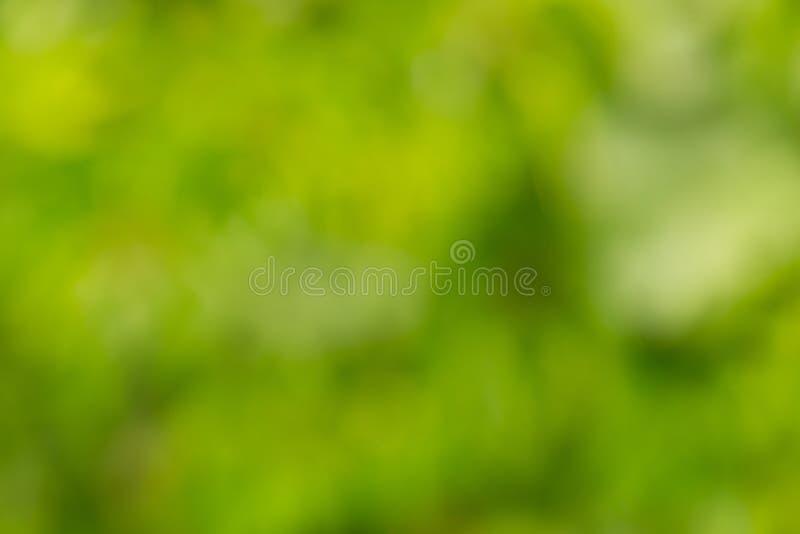 Natuurlijke groene vage achtergrond royalty-vrije stock foto