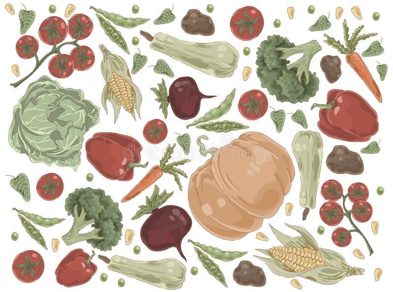 Natuurlijke groenten, pompoen, kool, tomaten, paprika, broccoli, graan, wortel, bieten, aardappels, organische voeding stock illustratie