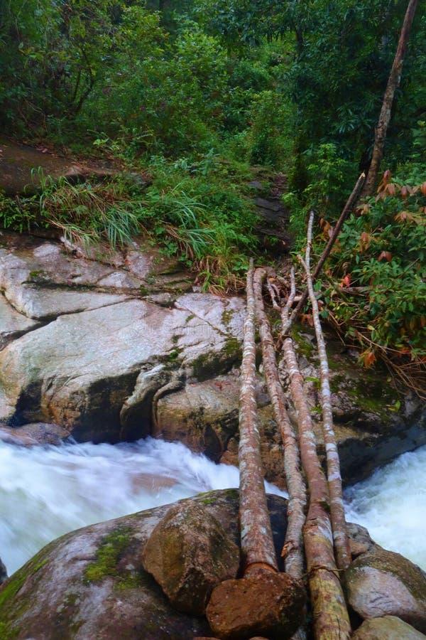 Natuurlijke houten die brug in het midden van een wildernis in Knuppel Xat, Lao Cai, Vietnam wordt gevestigd royalty-vrije stock afbeelding