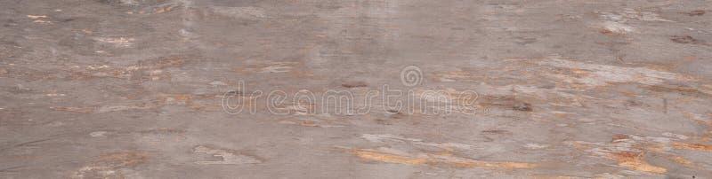 Natuurlijke houten textuur van boom zonder schors stock foto