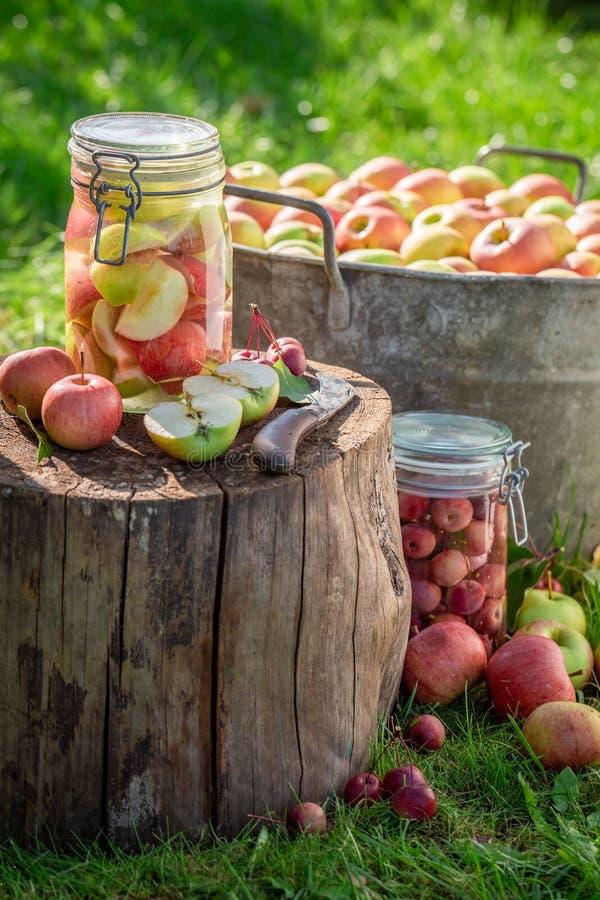 Natuurlijke ingeblikte appelen in de kruik in de zomer royalty-vrije stock fotografie