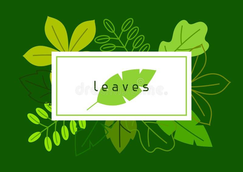 Natuurlijke kaart met gestileerde groene bladeren De lente of de zomergebladerte stock illustratie