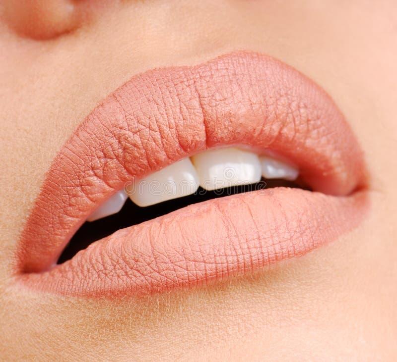 Natuurlijke kleur van lippenstift stock foto's