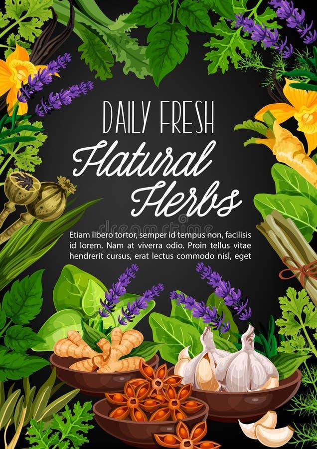 Natuurlijke kruiden en organisch kruidig kruiden stock illustratie