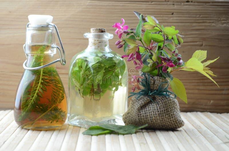 Natuurlijke kruidentintengeneeskunde royalty-vrije stock foto