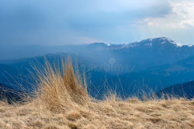Natuurlijke landschapsmening van bergen en gras, mooie achtergrond voor ontwerpen en kaarten Vroeg de lentelandschap van droog gr stock foto's