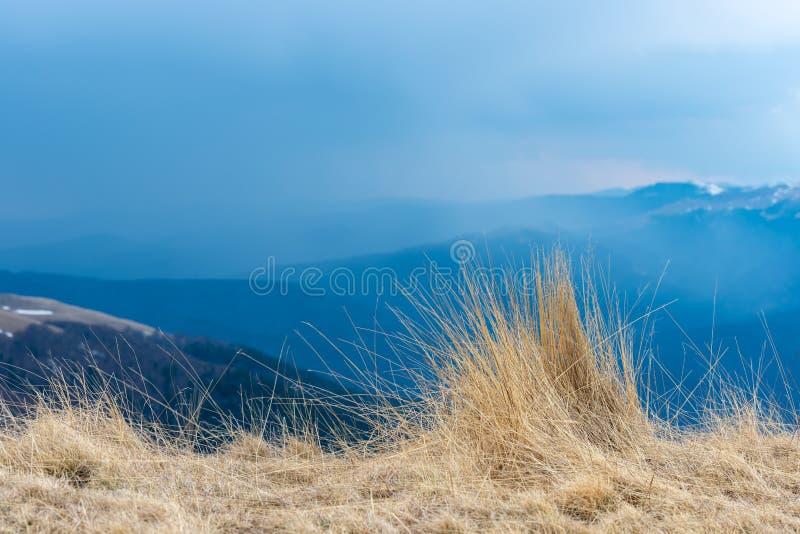 Natuurlijke landschapsmening van bergen en gras, mooie achtergrond voor ontwerpen en kaarten Vroeg de lentelandschap van droog gr stock foto