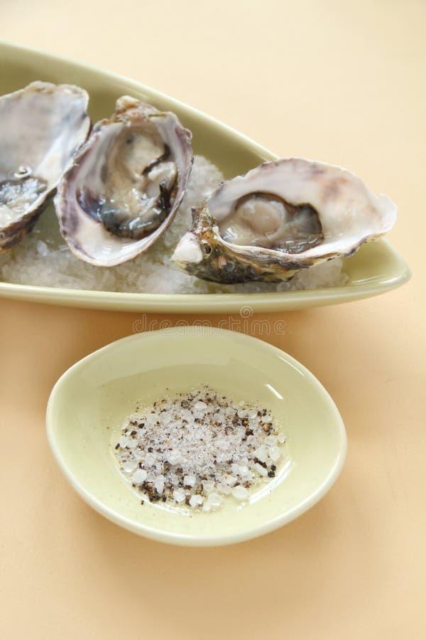 Natuurlijke oesters royalty-vrije stock afbeelding