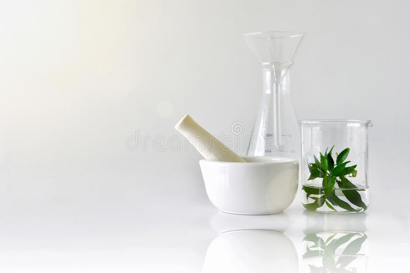 Natuurlijke organische plantkunde en wetenschappelijk glaswerk, Alternatieve kruidgeneeskunde, Natuurlijke de schoonheidsproducte stock fotografie