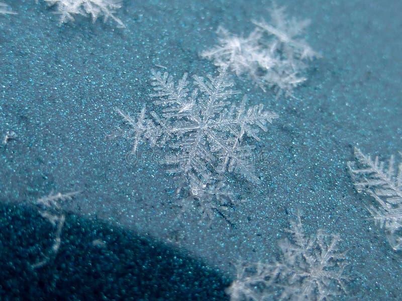 Natuurlijke reusachtige sneeuwvlok op een groene achtergrond royalty-vrije stock afbeelding