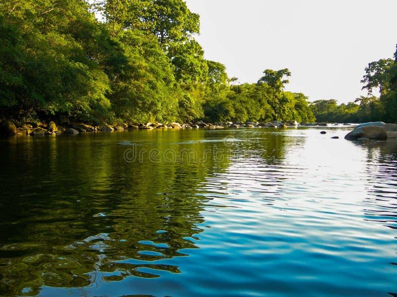 Natuurlijke Rivier Barinas Venezuela Barinita stock fotografie