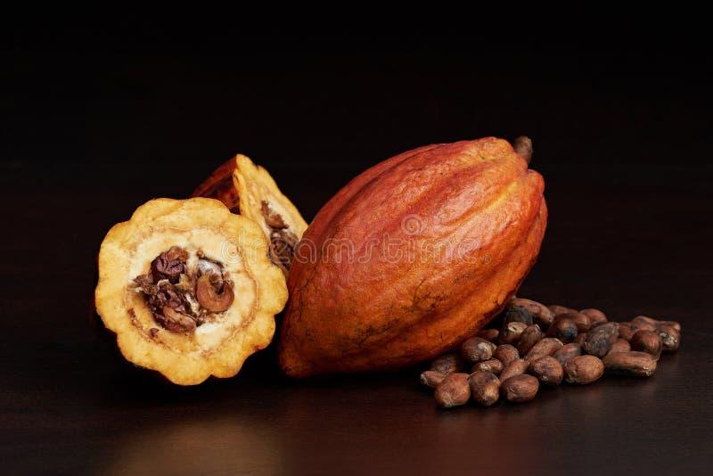 Natuurlijke ruwe open cacaopeul stock afbeeldingen