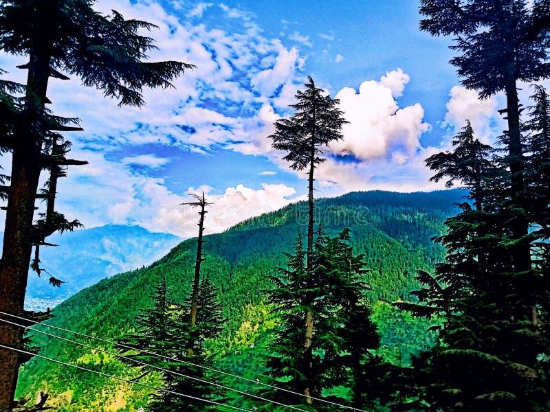 Natuurlijke schoonheid in India stock foto's
