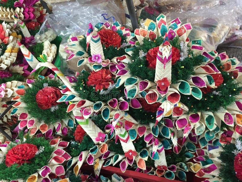 Natuurlijke schoonheidsbloem in Bangkok royalty-vrije stock fotografie