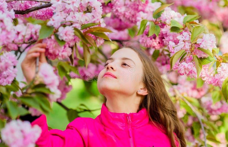 Natuurlijke Schoonheidsmiddelen voor Huid klein meisjeskind in de bloei van de de lentebloem Geniet van geur van tedere bloei Het stock foto's