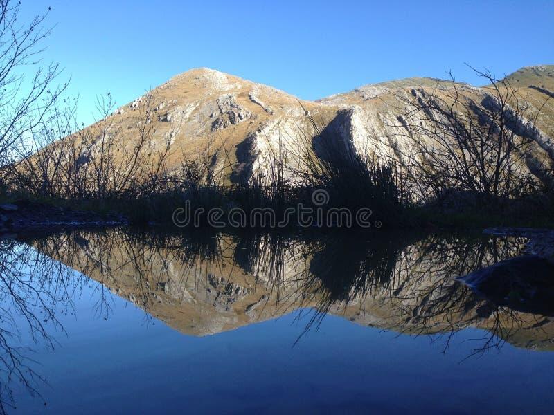 Natuurlijke spiegel royalty-vrije stock fotografie