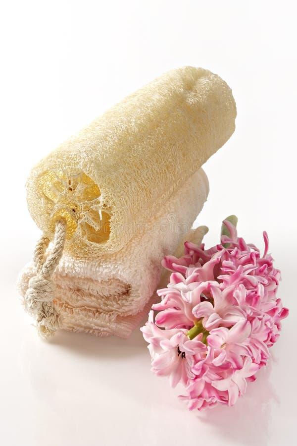 Natuurlijke spons en badstofhanddoek stock afbeelding
