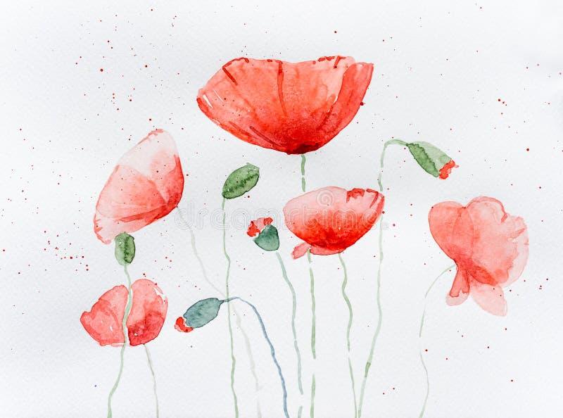 Natuurlijke tekening van papaverbloemen royalty-vrije stock afbeelding