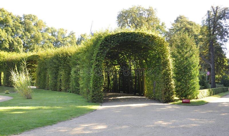Natuurlijke tunnel van Sanssouci in Potsdam, Duitsland royalty-vrije stock fotografie