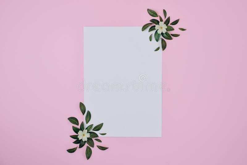 Natuurlijke vectorsamenstelling Groene bladeren, gele bloem, document spatie op pastelkleur roze achtergrond Het concept van de z royalty-vrije stock afbeeldingen