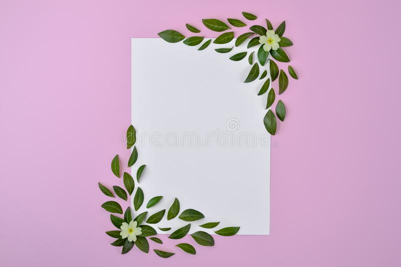 Natuurlijke vectorsamenstelling Groene bladeren, gele bloem, document spatie op pastelkleur roze achtergrond Het concept van de z royalty-vrije stock fotografie