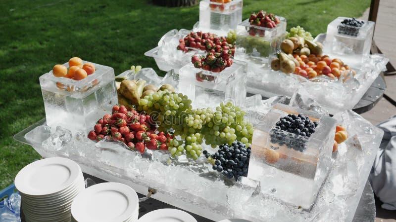 Natuurlijke voedingconcept met hoogte - het dieet van de kwaliteitsglasvezel met fruit Voedsel hoog in anthocyanins, slimme anti- royalty-vrije stock foto's