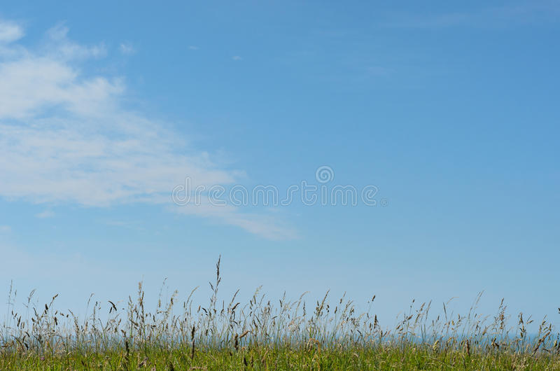 Natuurlijke Wilde Grasrijke Heuveltop die Overzees met Heldere Blauwe Hemel overzien royalty-vrije stock foto's