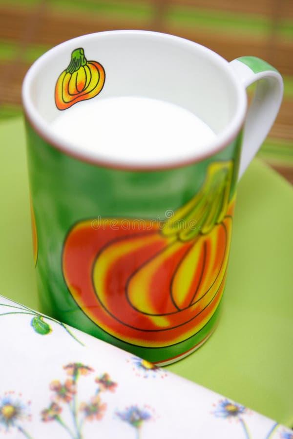 Natuurlijke yoghurt royalty-vrije stock foto