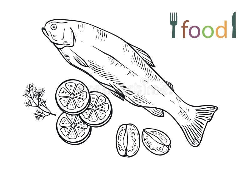 Natuurlijke zeevruchten Ingrediënten en kruiden voor het koken van vissen royalty-vrije illustratie