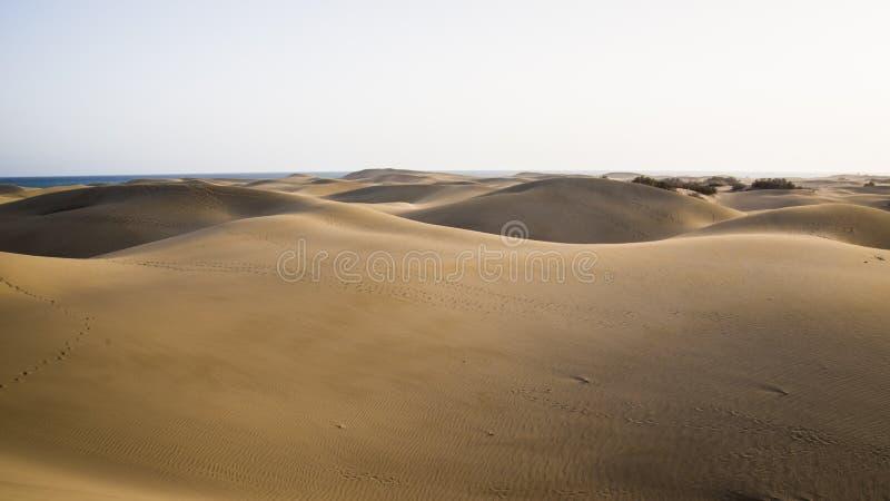 Natuurreservaat en duinen van Maspalomas, het eiland van Gran Canaria, Spanje stock fotografie