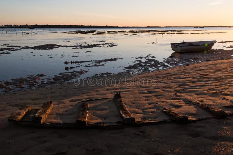 Natuurreservaat Ria Formosa - Algarve - Portugal royalty-vrije stock afbeelding