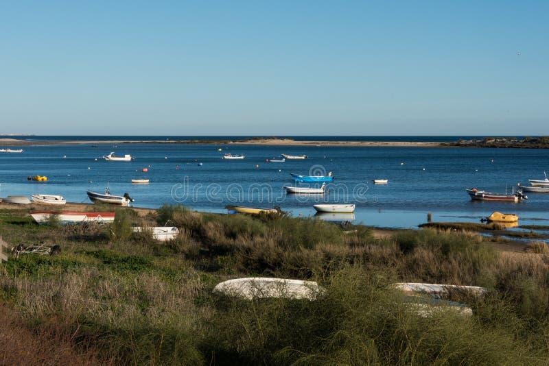Natuurreservaat Ria Formosa - Algarve - Portugal royalty-vrije stock foto