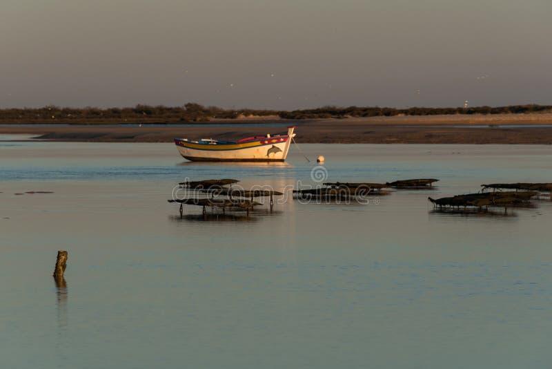 Natuurreservaat Ria Formosa - Algarve - Portugal stock afbeelding