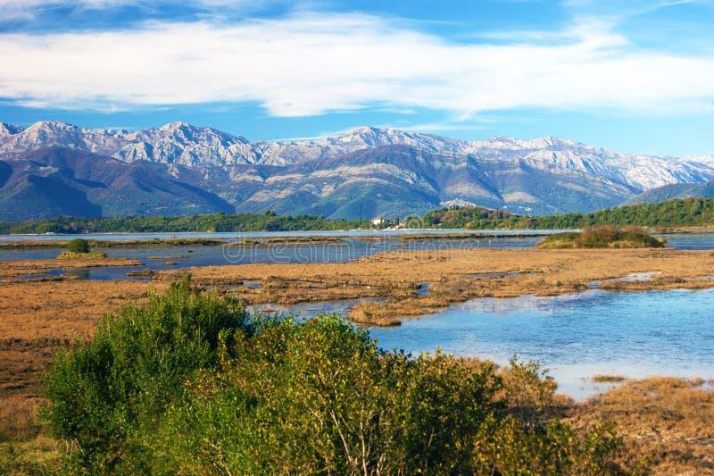 Natuurreservaat van Tivat stock fotografie