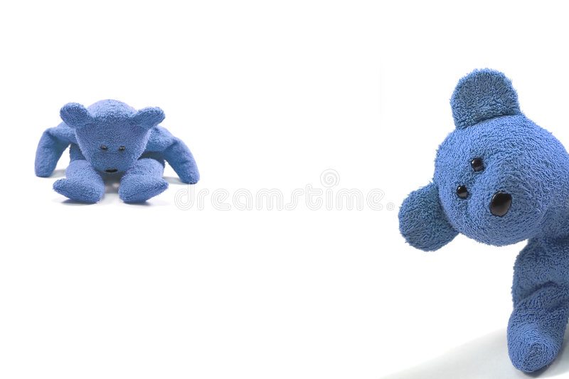 Naught boy bears. Two bears looking naughty against a white background royalty free stock photography