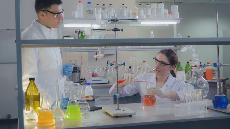 Nauki drużyna pracuje w laboratorium obrazy royalty free