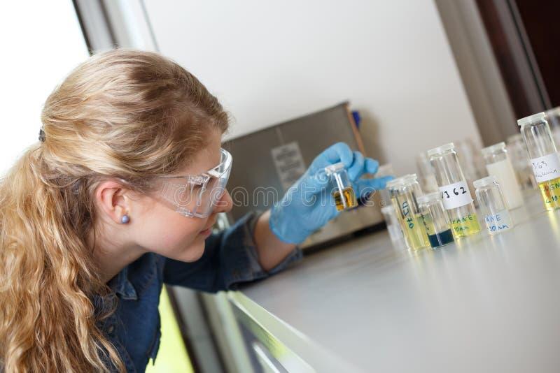 Naukowa badanie w lab środowisku zdjęcia stock