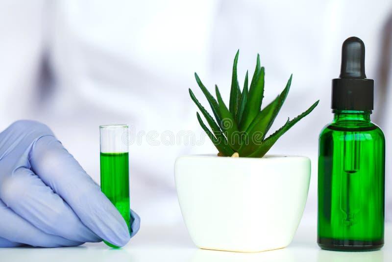 Naukowiec, dermatolog robi organicznie naturalnemu zielarskiemu cosmet fotografia stock