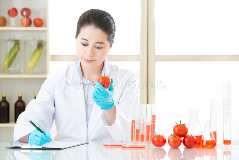 Naukowiec Nagrywa genetycznych modyfikacja dane od egzamininować zdjęcia royalty free